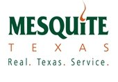 Real Texas Service logo