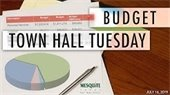 town hall budget