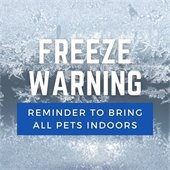 Freeze Warning: Reminder to bring all pets indoors
