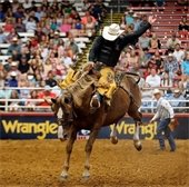 man riding a horse at the Mesquite Rodeo