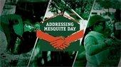 Addressing mesquite