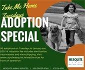 Take Me Home Tuesdays adoption special