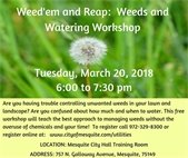 weeds workshop