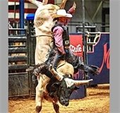 Mesquite Championship Rodeo bullrider