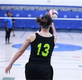 adult volleyball league