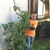 kids carries branches while volunteering for Addressing Mesquite Day