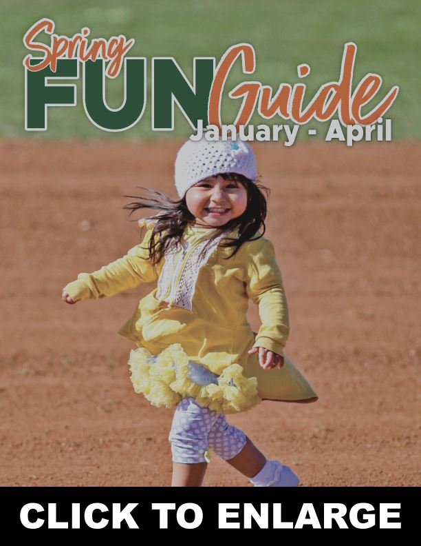 Fun-Guide-Cover-Graphic-(50plus Page)