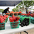 Mesquite Marketplace-Farmers Market-Downtown