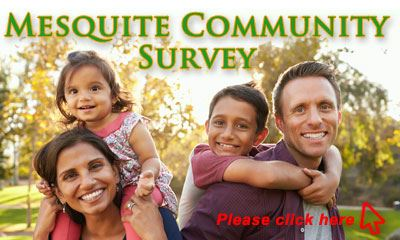 City of Mesquite Survey